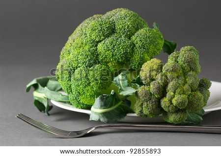 Raw broccoli in white plate on gray background. - stock photo
