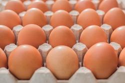 Raw chicken eggs in a cardboard tray, farm brown eggs background.