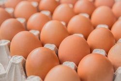 Raw chicken eggs in a cardboard tray, farm brown eggs background, soft focus.