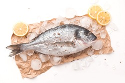 Raw dorada fish or gilt-head bream on ice with lemon and salt over white background, flat lay, top view