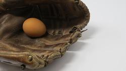 Raw Egg nestled inside an Old Leather Baseball Mitt