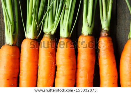 raw fresh carrots with tails, top view - stock photo
