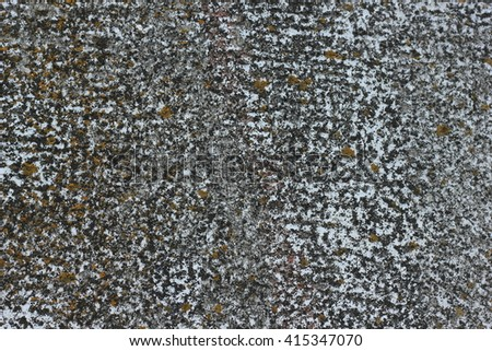 raw granite mossy #415347070