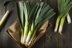 Raw Green Organic Leeks Ready to Chop