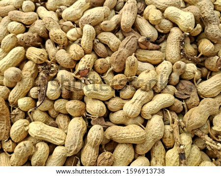 raw groundnuts in the market