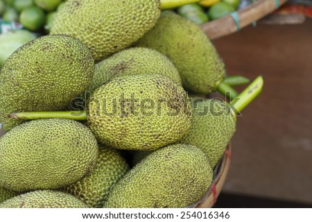 raw jackfruit or green jackfruit for sale to be edible vegetable in thailand local market