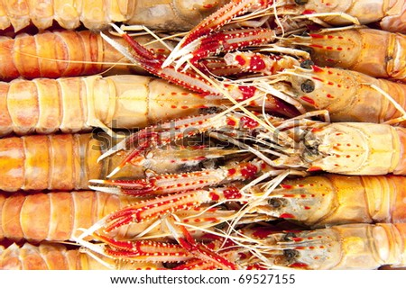 Raw Langoustines from the market .