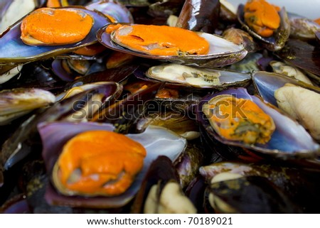 Raw Mussels from the fish market .