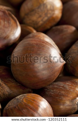 Raw Organic Brown Chestnuts against a background