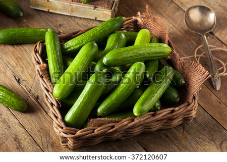Raw Organic Mini Baby Cucumbers Ready to Eat #372120607