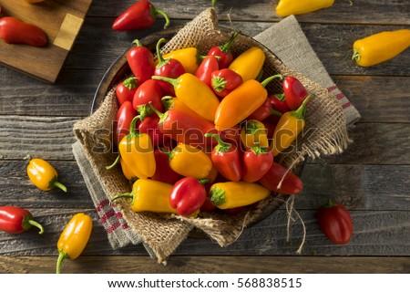 Raw Organic Mini Sweet Peppers Ready to Eat