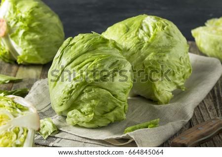 Raw Organic Round Crisp Iceberg Lettuce Ready to EAt #664845064