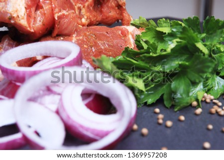 Raw pork meat, green parsley, onion rings and spices is ingredients for meat dishes #1369957208