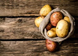 Raw potato food . Fresh potatoes in an old sack on wooden background. Free place for text. Top view