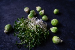 Raw radish microgreens and green brussels sprouts isolated on black background. Healthy fresh radish sprouts. and cabbage Organic food.