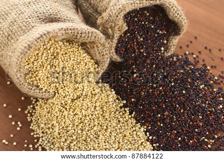 Raw red and white quinoa grains in jute sack on wood. Quinoa is grown in the Andes region  and has a high protein content (Selective Focus, Focus on the white quinoa grains at the sack opening)