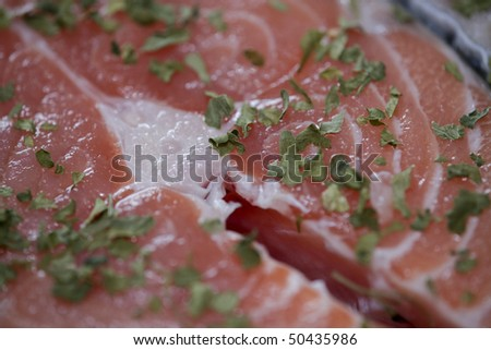 Raw salmon steak - Close Up - Eos 1ds mkII - stock photo