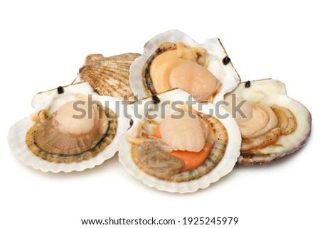 Raw scallops on white background Imagine de stoc ©