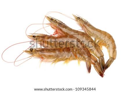 Raw shrimp isolated on white background