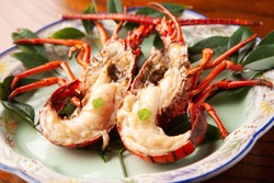 raw spiny lobster on a plate