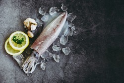 Raw squid on ice with salad spices lemon garlic on the dark plate background / fresh squids octopus or cuttlefish for cooked food at restaurant or seafood market