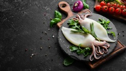 Raw squid with rosemary and spices on a black plate. Seafood. Top view. Free space for your text.