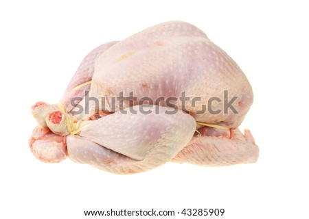Raw turkey isolated against white