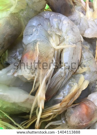 Raw, Uncooked, Dead, Fresh Shrimp