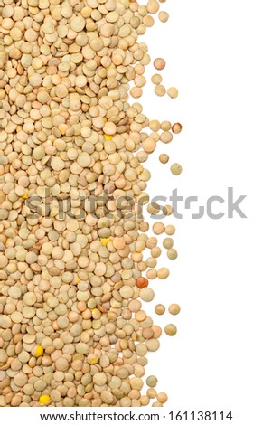 Raw uncooked lentils border on white background