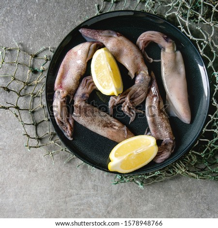 Raw uncooked squids calamari on ceramic plate with lemon and fishing nets over grey texture background. Flat lay, space