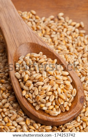 Raw wheat seeds on wooden spoon #174253742