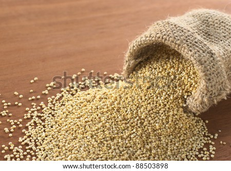 Raw white quinoa grains in jute sack. Quinoa is grown in the Andes and is valued for its high protein content and nutritional value (Selective Focus, Focus on the quinoa in the front sack opening)