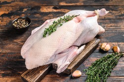 Raw whole mallard duck, poultry meat with herbs. Dark wooden background. Top view