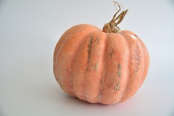 Raw, wild organic pumpkin isolated on the white background.
