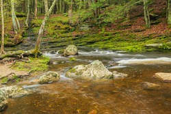 Raymond Brook flowing by moss-covered rocks