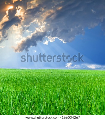 rays of the sun penetrate through clouds of blue sky  on the green grass