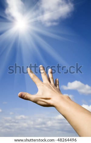 Reach for  the sun