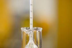 Reading the value from a hydrometer. Used for determining the specific gravity of liquids including beer.