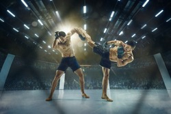Ready to defend and attack. Two professional fighters posing on the sport boxing ring. Couple of fit muscular caucasian athletes or boxers fighting. Sport, competition and human emotions concept.