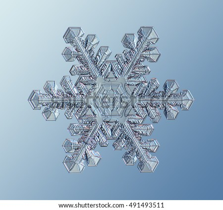 real crystal snowflake #491493511