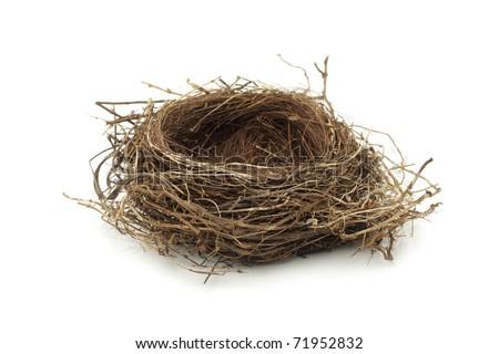 Photo of  Real empty bird nest on white