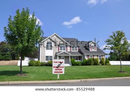 Homes Suburban Urban
