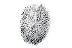 Real fingerprint on white background. Dactylogram, biometric and personal identification concept. Macro photo