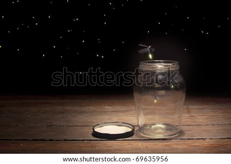 stock photo : real fireflies in a jar