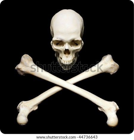 Real human skull with crossed bones