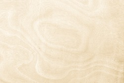 Real nature with plywood texture seamless wall and panel teak wood grain for background. The World's leading wooden with pattern natural working resource.