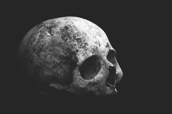 Real old human skull on a black background cranium close up