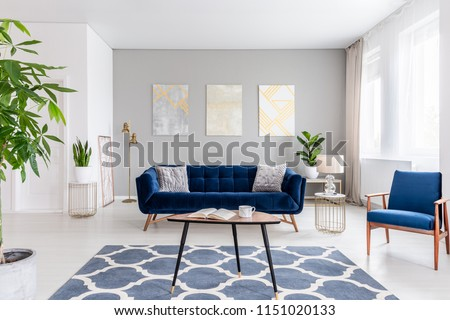 Real photo of an elegant living room interior with a blue sofa, armchair, coffee table, patterned carpet and paintings on the gray wall #1151020133