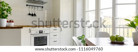 Real photo of white kitchen interior with fresh basil and tomatoes on countertop, windows, oven, green apples and plant on table
