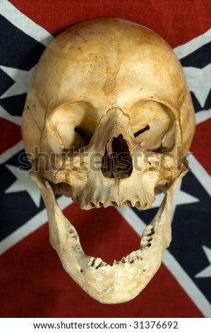 real skull smiling on Confederate, Rebel, or Dixie Flag